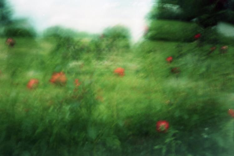 Park © Karen Stuke
