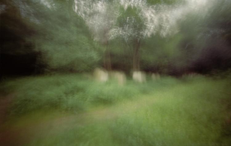 Tower Hamlets Cemetery Park © Karen Stuke